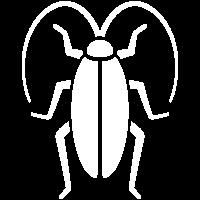 Cockroach Pest Control Treatment